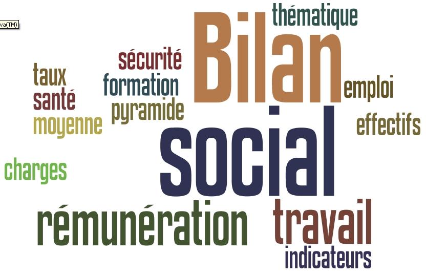 Le Bilan Social Individuel (BSI), la panacée ?